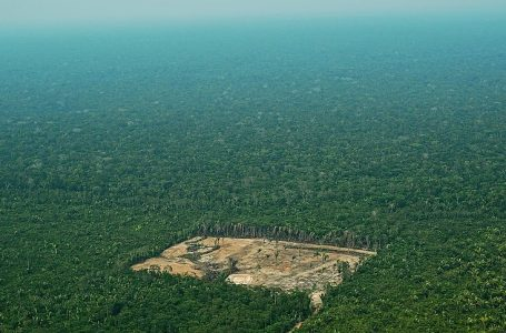 """(FILES) In this file photo taken on September 22, 2017 Aerial view of deforestation in the Western Amazon region of Brazil. – Brazilian far-right presidential candidate Jair Bolsonaro's declarations on the environment are a source of deep concern among activists who fear that the Amazonia, the """"lung of the planet,"""" will be sacrificed for the interests of agribusiness. (Photo by CARL DE SOUZA / AFP)"""